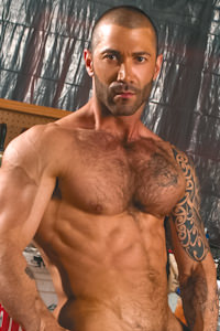 male muscle gay porn star Junior Stellano   hotmusclefucker.com