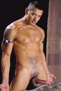 male muscle gay porn star Ruben D'Angelo | hotmusclefucker.com