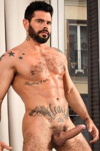 male muscle porn star: Mario Domenech, on hotmusclefucker.com