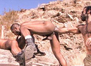 Fistpack 11 - Arabian Fist