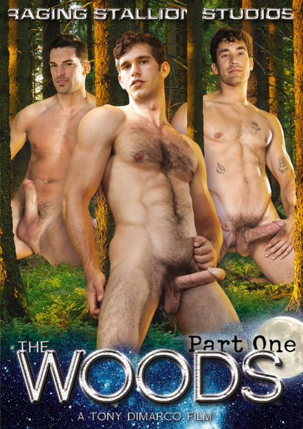 The Woods - Part 1 Dvd Cover
