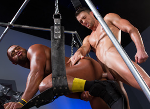gay muscle porn clip: Ass Fiends - Micah Brandt & Ryan Rose, on hotmusclefucker.com