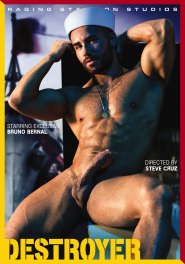 Destroyer DVD Cover