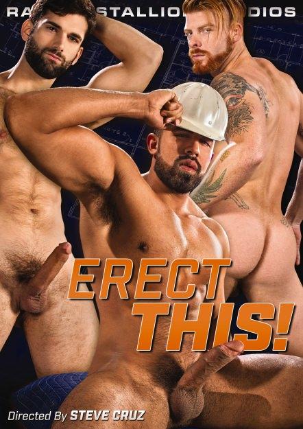 Erect This!