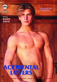Accidental Lovers DVD Cover