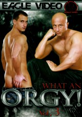 What An Orgy #03 Dvd Cover