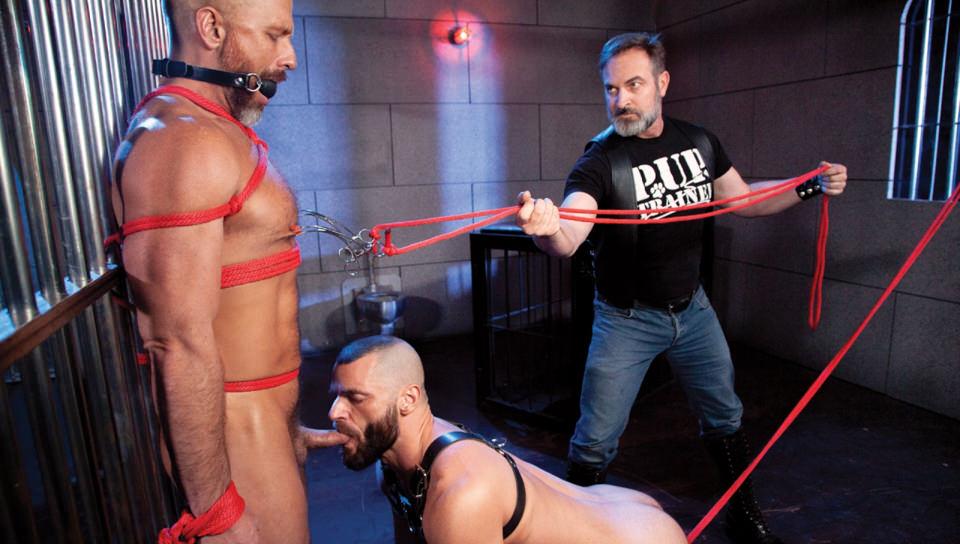 Leather Dogs, Scene #02