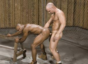 gay muscle porn clip: Wood Work - Eddie Diaz & Ty Lebeouf, on hotmusclefucker.com