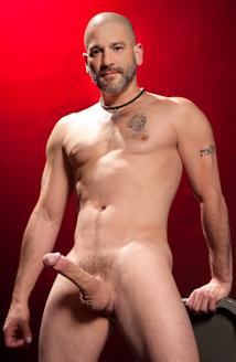 Tony buff gay