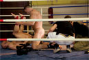 Ringside picture 23