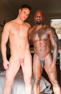 Hard Muscles Picture